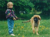 Barn- och hundvalp