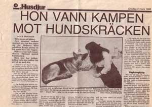 Husdjur 1988