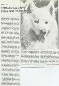 Hundinstruktörsutbildning Distans (Extrainsatt)