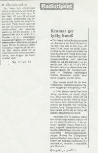 Radiotipset i DN 1982
