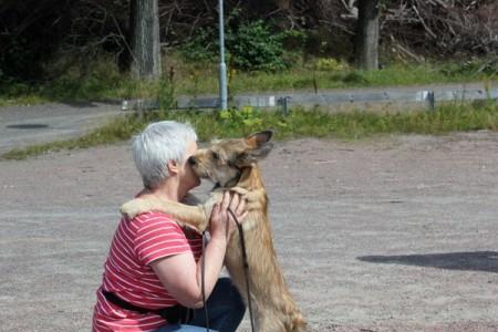Kurs 1. Relationsträning med valpar