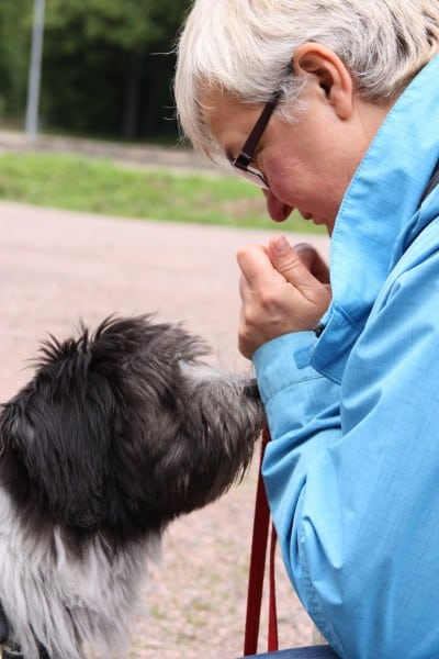 Individuell hundinstruktörsutbildning
