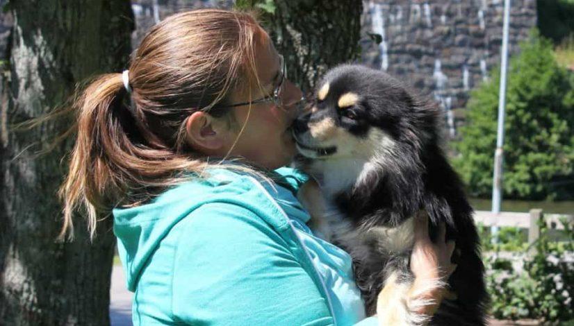 Valpkurs, unghundskurs eller hundkurs för vuxna hundar?