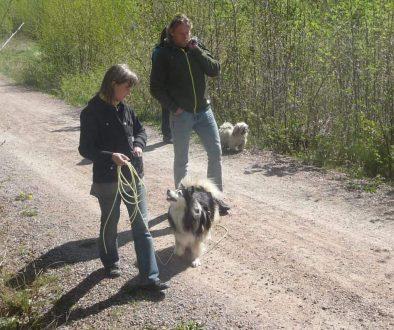 Karisma hundägarutbildning önskar god fortsättning!