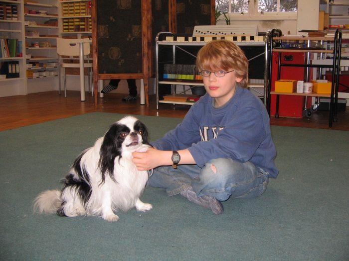 Ge pojkar en liten hund