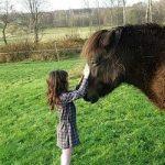 djur och barn